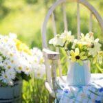 """Come realizzare un giardino: i migliori consigli """"fai da te"""" facili e veloci"""